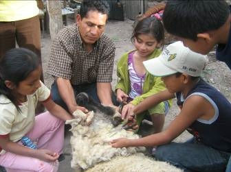 Ayacucho. Testimonio Fotográfico. 2010