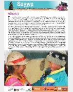 Libro de Saywa. Boletín informativo N° 2