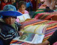 Imagen de Políticas de estado, desigualdad y justicia educativa: La educación intercultural bilingüe debe continuar