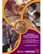 Libro de Docencia, interculturalidad y educación inicial. Prácticas docentes de Educación Intercultural Bilingüe en Educación Inicial en contextos andinos y amazónicos